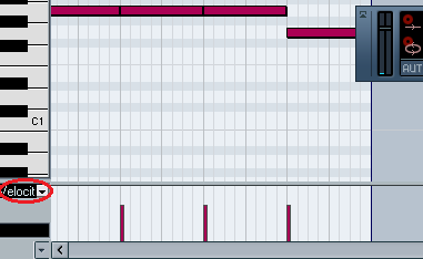 "This screenshot of Cubase shows the drop-down menu set to ""velocity"""